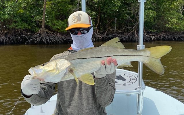 Everglades Florida Fishing Charters And Report