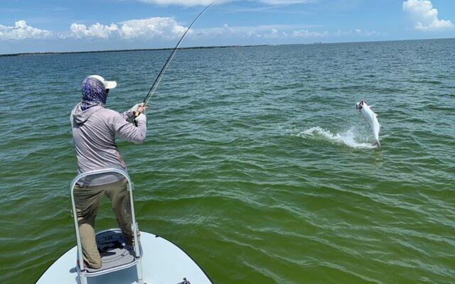 Everglades Tarpon Fishing Report